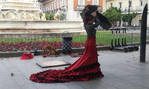 Seviljski brivec, Carmen in goba