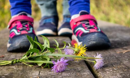 Cvetke in bučke o odraščanju